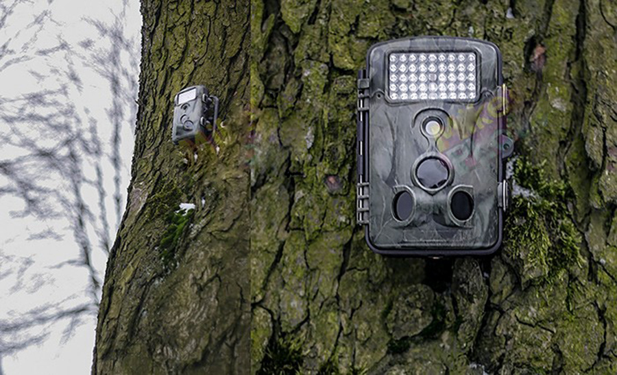 Best Cameras for Hunting | Digital Camera Review│Travel & Hunting